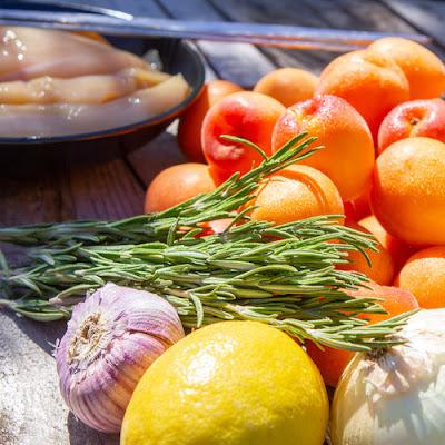 Recette-Paris-a-l-ouest-ma-Plancha-et-moi-cuisiner-sain-brochettes-poulet-abricot